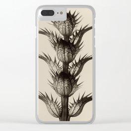 Karl Blossfeldt, Acanthus mollis Clear iPhone Case