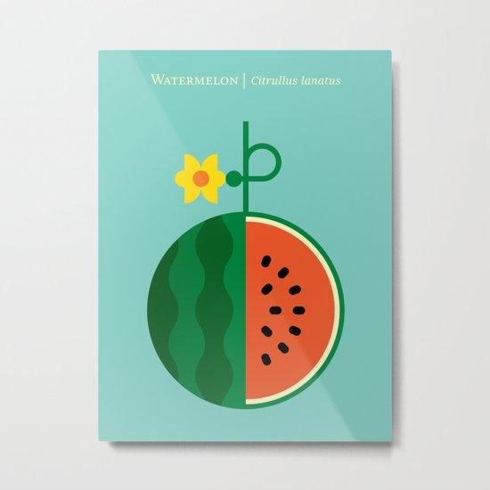 Fruit: Watermelon Metal Print