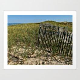 Cape Cod Beach Dunes Art Print