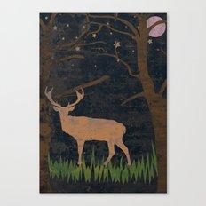 Glory of the Night Canvas Print