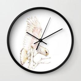 Mr Kea, New Zealand native parrot Wall Clock