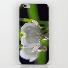 White Bleeding Heart iPhone & iPod Skin