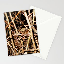 Nested In Thorns Stationery Cards