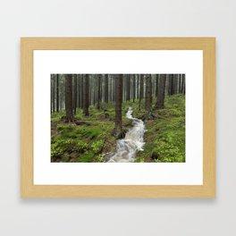 Water always flows downhill Framed Art Print