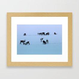 Reindeers Framed Art Print