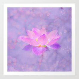 Lotus Emerging from the Water Art Print