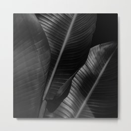 Banana leaf allure - night Metal Print