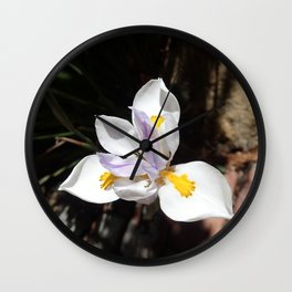 Fortnight Lily Wall Clock