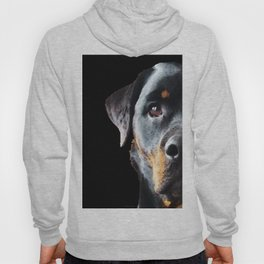Rottie Love - Rottweiler Art By Sharon Cummings Hoody