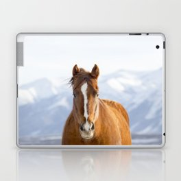 Beautiful Mountain Horse Laptop & iPad Skin