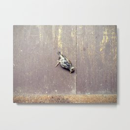 more dead birds Metal Print