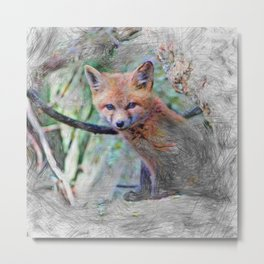 Artistic Animal Fox Baby Metal Print