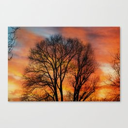 TRACERY Canvas Print