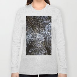 Branches Above Long Sleeve T-shirt