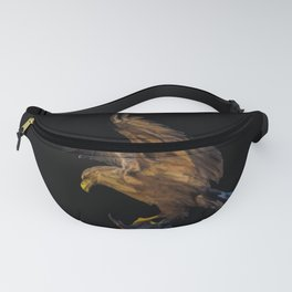 Eagle - 238 Fanny Pack