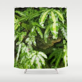 The Fernery Shower Curtain