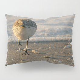 Can't Catch Me! Pillow Sham