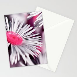 Marquerite white pink 01 Stationery Cards