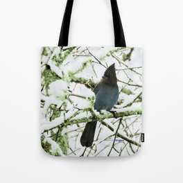 Steller's Jay in the Snow Tote Bag