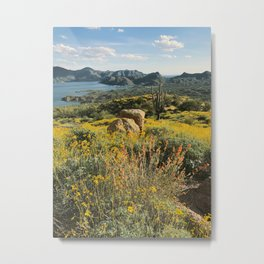 Arizona Spring Mountain Bloom Metal Print