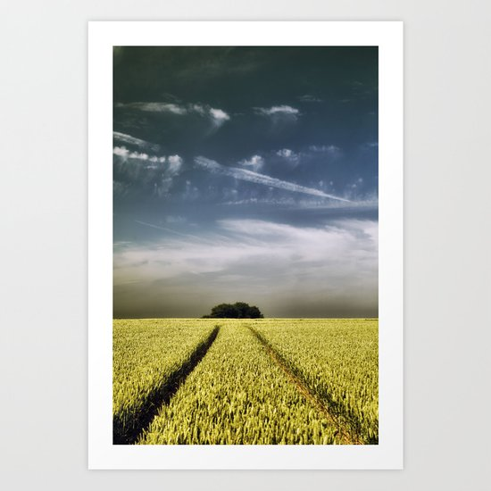 Tree Tracks Art Print