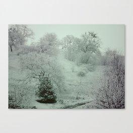 WinterSky #3 Canvas Print