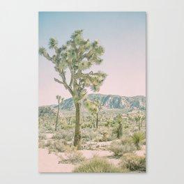 Joshua Tree Ombre Canvas Print