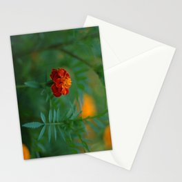 Marigold in garden Stationery Cards