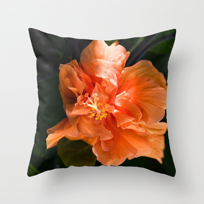 Apricot Hibiscus Throw Pillow