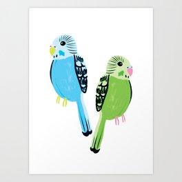 Pretty Parakeets Art Print