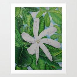 Tiare Tahiti Art Print
