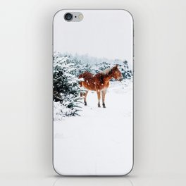 Winter horse iPhone Skin