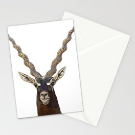 Blackbuck Indian Antelope Attentive Face Twisted Horns Straight Ears Mammal Stationery Cards