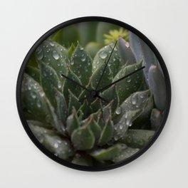 Rained on Cacti Wall Clock