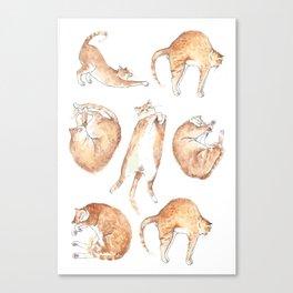 Catastrophic Canvas Print
