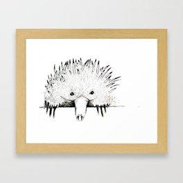 Nudge in Echidna Framed Art Print
