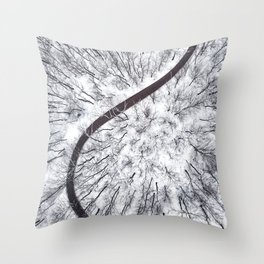 Winter forest and Road. Top view. Throw Pillow