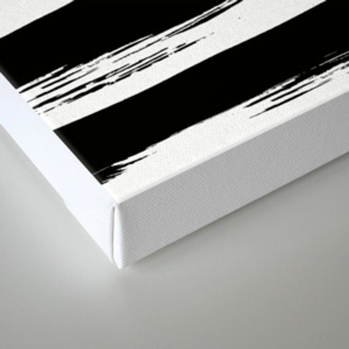 Paint Stripes Black and White Canvas Print
