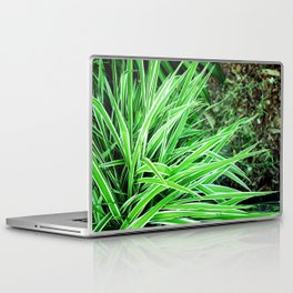 LongLeaves Laptop & iPad Skin
