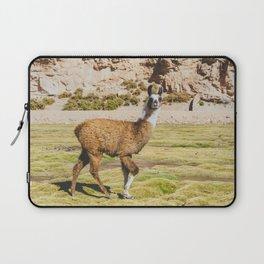 Curious llama in Bolivia Laptop Sleeve