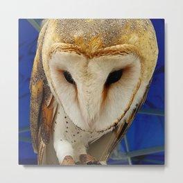 Mr. Owl the Barn Owl Metal Print