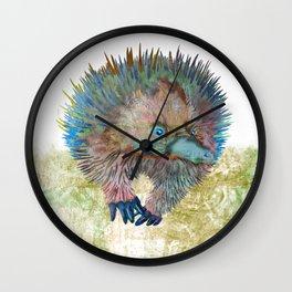 Echidna Explorer Wall Clock