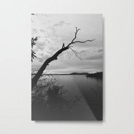 The Cove VII Metal Print