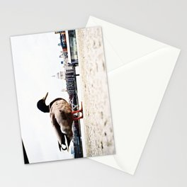 duckzilla Stationery Cards