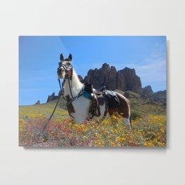 Springtime In The Arizona Desert Metal Print