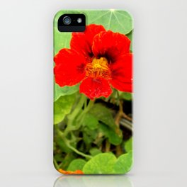 Flower iPhone Case