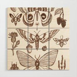 Natural History (Brown) Wood Wall Art
