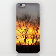 Radiant Sunset iPhone & iPod Skin