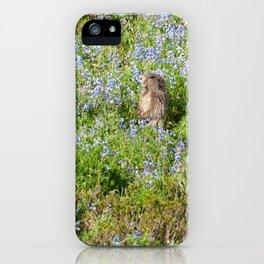 Marmot and wild flowers at Mount Rainier iPhone Case