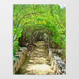 Follow Me to the Cenote, Tulum, Quintana Roo Mexico Poster